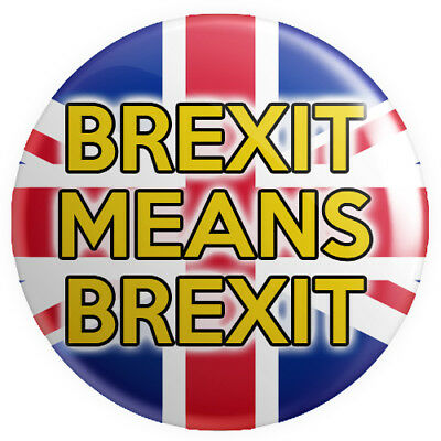 Brexit Means Brexit BUTTON PIN BADGE 25mm 1 INCH UK Europe Referendum