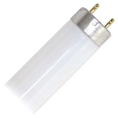 "Fluorescent Tube Light Bulb Cool , 18"" Long, Eiko 15521-1 F15T8/CW Straight T8"