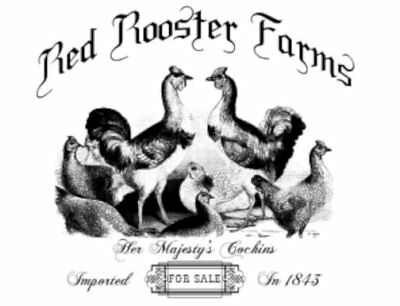 Vintage Image Rooster Farm Furniture Labels Transfers Waterslide Decals MIS662
