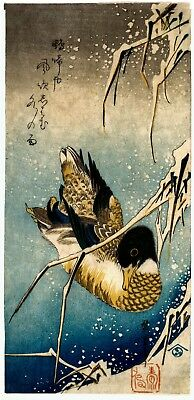 Repro Japanese Print by Utagawa Hiroshige 'Mallard and Snow Covered Reeds'