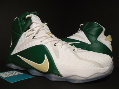 1a216b7417c Nike Lebron Xii 12 Svsm St Vincent Mary Pe Promo Sample Mvp White Green  Gold New