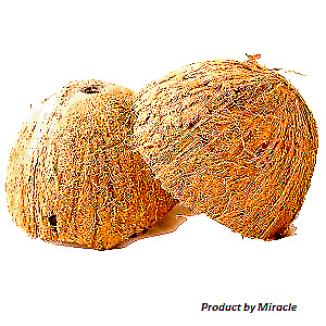 Two Coconut Shell Halves Natural High-Quality Coconut Shells for Food Bowl