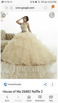 3e4ac2eb4d0 NEW Quinceanera Dress Party Evening Ball Formal Prom Pageant Wedding Gown