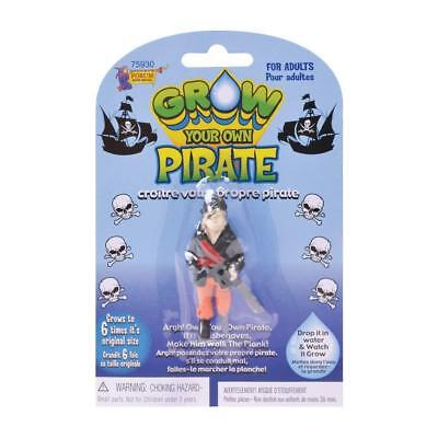 Grow A Your Own Pirate Novelty Secret Santa Gift Stocking Loot Bag Filler 75930