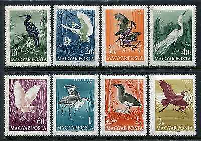 Hungary 1233-1240 MNH Birds:1959.Great Cormorant Little Egret Great Egret x18986
