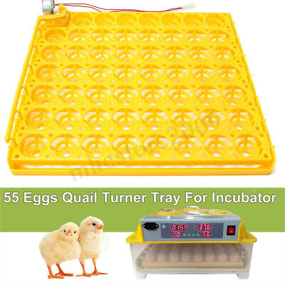 55 Egg Automatic Incubator Tray Digital Hatching Chicken Temperature Control