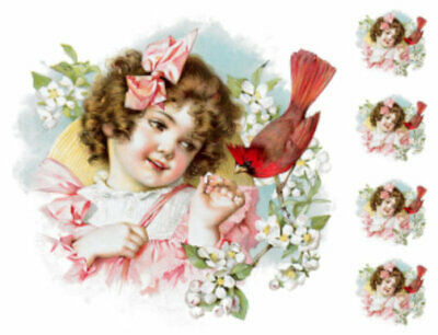 Vintage Image Victorian Little Girl Cardinal Transfers Waterslide Decals KID424