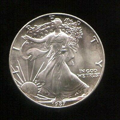 1987 US American Eagle $1.00 Coin 1oz of fine .999 Silver (Great looking coin)