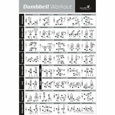 Dumbbell Workout Exercise Poster Laminated - Strength Training Chart - Build