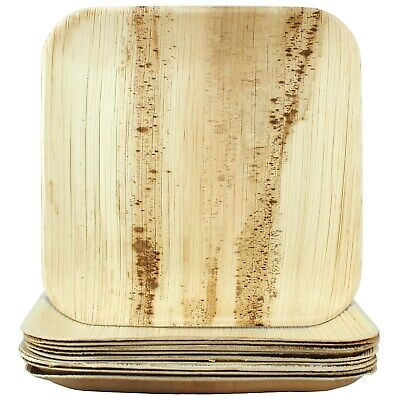 Natural Palm Leaf Plates Large Square 10 Biodegradable Eco-Friendly Party