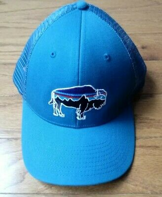 Patagonia Fitz Roy Bison Blue Green Buffalo Snap Back Trucker Hat One Size  NWOT d99fbb57af56