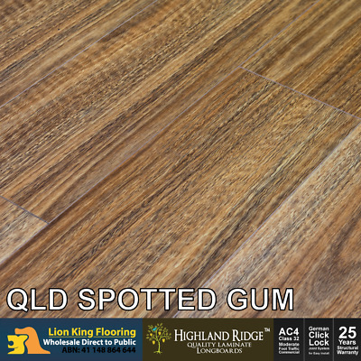 Qld Spotted Gum 12mm Laminate Flooring Long Board Colour Embossing Premium Over Stock Item Plenty In