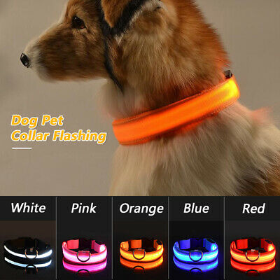 USB Rechargable LED Dog Pet Collar Luminous Light Up Necklace Tag Supply
