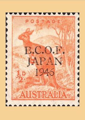 1946 BCOF Military Forces 1/2d Kangaroo Australia ---> Postcard Size Photo PRINT