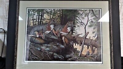 """""""PA Gray Foxes"""" Litho Print by Gerald W. Putt 33x27"""" Framed"""