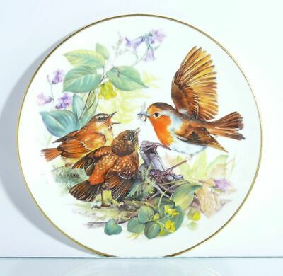 Collection Plate Hutschenreuther Bird Hungry Robin with Certificate Boxed