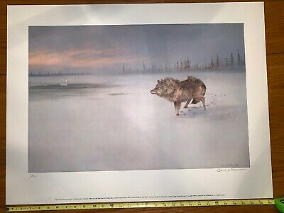 1987 Owen J Gromme Master Print Wolf And Swan 81/500 25.5x17 inch Neb
