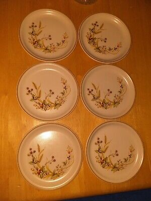 Lovely Vintage Set Of 6 Marks & Spencer Harvest Cake/Side Plates