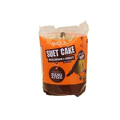 Suet To Go Cake With Insect 350g