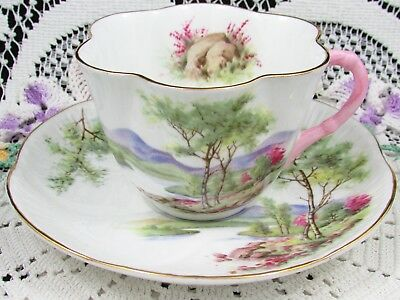 Shelley Trees River Mountain Scene Pink Handle Tea Cup And Saucer