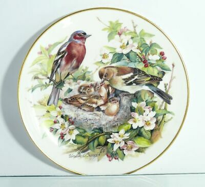 Collection Plate Hutschenreuther Bird Kinderstube at the Chaffinches Certificate