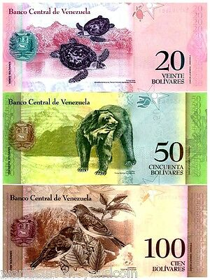 Venezuela Full Set 2 5 10 20 50 100 Turtle 2007-2015 Animal Bolivares Unc 6 Note