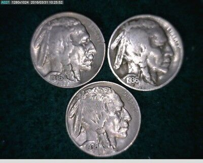1936 P D S 5C Buffalo Nickels ( 14s162 )