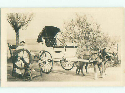 rppc Old ANTIQUE SPINNING WHEEL BESIDE WHITE CART PULLED BY DOGS AC8407
