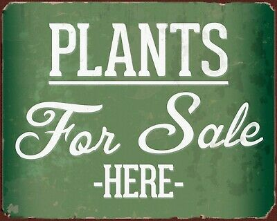 Plants For Sale Garden Centre Allotment Greenhouse Flowers Metal Tin Sign 1751