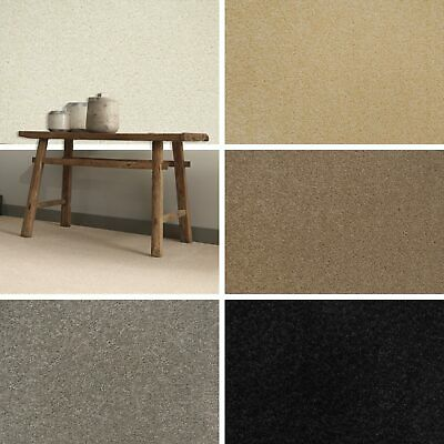 Quality Action Back Twist Carpets Hardwearing Budget Lounge Bedroom Study CHEAP