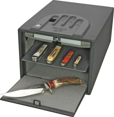 Gun Vault--MultiVault Biometric