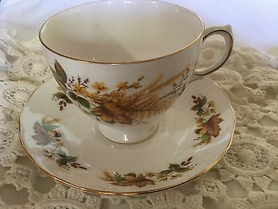 Queen Anne Bone China Cup And Saucer England     White/autumun Leaves