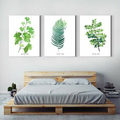 Framed Canvas Print Green leaf plant decorates drawing room - Multi Panel Wall A