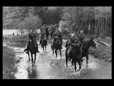 WW2 German Officers Cavalry PHOTO Soldiers Horses Cavalry Brigade WWII