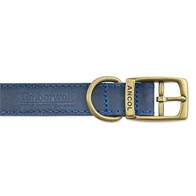 Ancol Timberwolf Leather Collar Blue 26-31cm Size 2 - Dog Sable Brown Lead