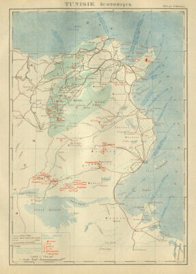 FRENCH COLONIAL TUNISIA RESOURCES. Tunisie. Economique Economic 1931 old map
