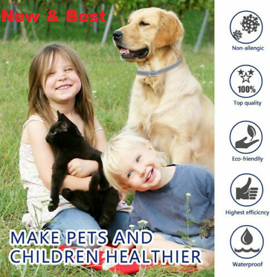 New Bayer For Dog-Dogs Flea & Tick Collar 8 Month Protection (18 lbs)