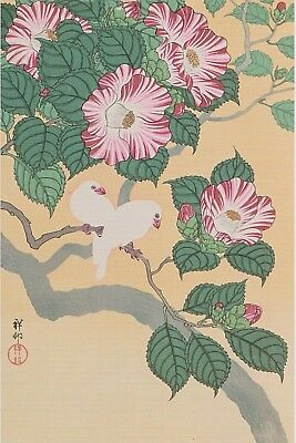 Koson / Shoson : Rice Birds & Camellia : Print Of A Japanese Woodblock Artwork