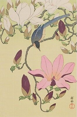 Koson / Shoson : Magpie & Magnolia : Print Of A Japanese Woodblock Artwork