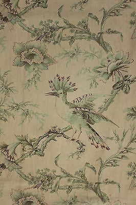 Fabric Antique French bird Pillement design in sea foam green RARE and beautiful