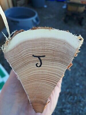 Pacific Yew bow Stave