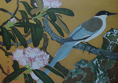 JAPANESE MAGPIE & GOLDEN RHODEDENDRON - Japanese Art Print (Woodcut) By RAKUSAN