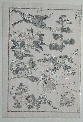 HOKUSAI MANGA : PLANTS & VEGETABLES: Original Japanese Woodblock Print (Woodcut)