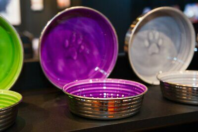 Le Bol dog bowl, Award winning