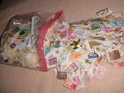 World Collection Of Stamps Off Paper Mint & Used 1.1+ Pounds   1940-Now