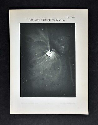 1894 Muller Celestial Map - The Great Nebula in Orion Constellation Cosmos Space