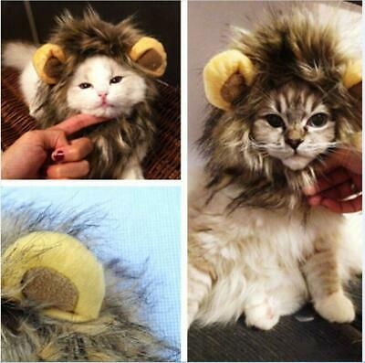 Pet Cat Dog Costume Lion Mane Wig Fluffy Hat With Ears Halloween Dress Up Cloth