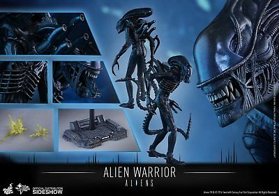 Hot Toys Aliens Movie MMS38 Alien Warrior Brown Repaint Edition 1:6 Scale