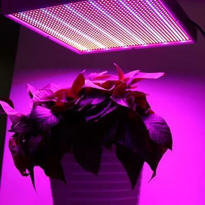 120W 1365 LED Grow Light Panel Lamp For Indoor Veg Flowering Hydroponic Plant