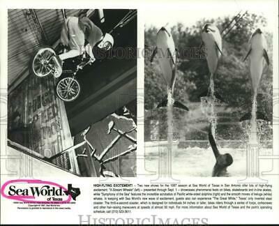 1997 Press Photo Bike and dolphin shows at Sea World of Texas in San Antonio